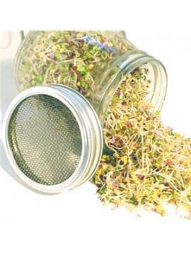 GEO sprouter jar