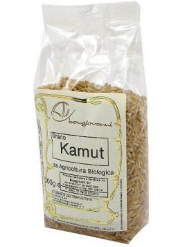 Kamut ® in grains 500g - Organic