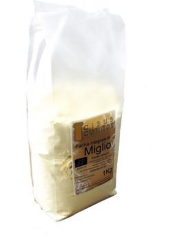 Millet flour 1Kg - Organic