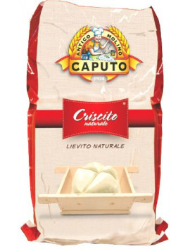 Natural yeast powder - Criscito 400 10Kg