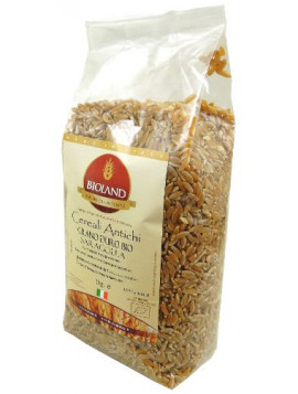 Saragolla (ancient durum wheat variety) 1Kg - Organic